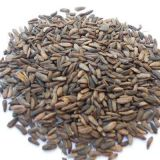 10%-40% estratto naturale della radice di Burdock di Arctiin per salute maschio