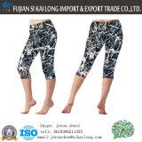 최신 판매 주문 고품질 스포츠 착용 Yogawear