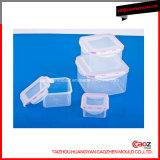 Contenedor de comida de plástico con tapa / caja de almacenamiento de moho
