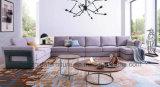Jogo do sofá da tela de Furntiure da sala de visitas de Hotsale