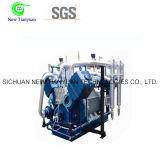 Gas-Kompressor der Luftkühlung-25MPa CNG mit Ex-Arbeiten Preis