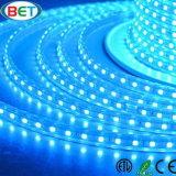 220V/110V 3528 60LED/M高圧LEDの滑走路端燈7-8lm