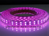 5050 RGB SMD LED 지구 높은 광도 120의 LEDs