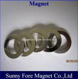 De ronde Magneet van het Neodymium van de Ring