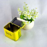 Zinn-Kasten mit eingehängter Kappe/kundenspezifischem geformtem Zinn-/Zinn-Kasten-Großverkauf