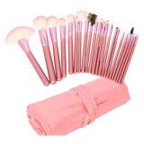 conjunto de cepillo profesional rosado del maquillaje 22PCS con cuero de la PU