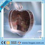 Изготовления продавая акриловый заключенный контракт самомоднейший кристаллический глобус снежка картинных рамок Apple пластичный