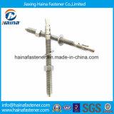 Fornecedor chinês aço inoxidável âncora fixadores parafusos âncora