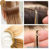 el 20% de la extensión india del pelo de Remy del pelo de la cadena del algodón de Corea