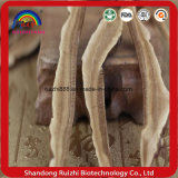 Vendita della fabbrica della fetta di Ganoderma Lucidum del Basswood