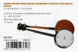 Банджо 5 шнуров тавра Aiersi электрическое (BJ005E-24)
