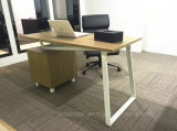 사무실 룸 (WE05)를 위한 2017 간단한 최신 판매 나무로 되는 책상