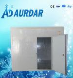 Sitio comercial/industrial del congelador/cámara fría del congelador de ráfaga/sitio del congelador