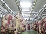 Stanza più fredda d'attaccatura della carne/stanza conservazione frigorifera/magazzino del congelatore