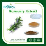 De Lage Prijs van Rosemary Extract, Rosemary Extract Ursolic Acid