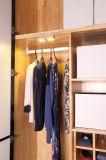 Garderobe der PIR Fühler-magnetische Unterseiten-LED oder Küche-Schrank-Licht mit Lithium-Batterie