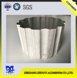 Ochenta y uno perfiles a del aluminio