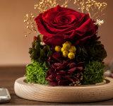 Manier 100% Natuurlijke Echt nam Bloem in Glas voor de Gift van de Valentijnskaart toe
