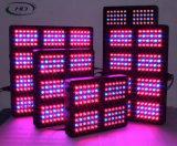 최신 판매 200W -1000W LED 플랜트는 할인에 가볍게 증가한다