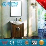 Governo di stanza da bagno grigio dell'acciaio inossidabile di colore (BY-B6005)