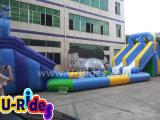 Parque inflable del agua de la talla media para el verano