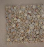 Qualitäts-Fluss-Felsen-Luftblasen-runde Glasmosaik-Fliese mit Shell