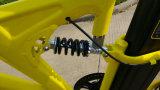 새로운 형식 세륨 MTB 타이어를 가진 전기 산악 자전거