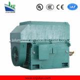 motore a corrente alternata Trifase ad alta tensione di raffreddamento Air-Air di serie di 6kv/10kv Ykk Ykk6303-8-1000kw