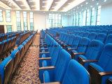 De eenvoudige Stoel van het Auditorium van het Schuim van het Ontwerp met de Terugkeer van de Plaatsing langzaam