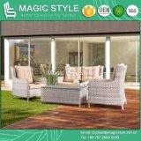 Weidenkombinations-Sofa-gesetztes im Freiensofa eingestellt (magische Art)