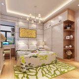 Guardaroba di legno personalizzato del portello scorrevole della camera da letto Raggiungere-nel tipo