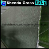 幼稚園のための16800tuft/Sqm密度の二色の擬似草