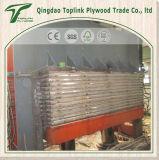 La fabbrica direttamente vende il compensato del pino di Radiata, compensato del larice