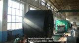 Banda transportadora resistente química
