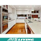 Мебель кухонного шкафа кухни поставкы фабрики Китая модульная (AIS-K206)