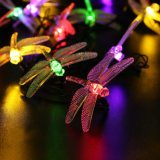 A corda solar bonita do diodo emissor de luz da libélula ilumina a luz de Natal