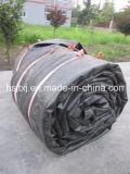 Ballons en caoutchouc ronds gonflables de ponceau adaptés aux besoins du client par Chine de Jingtong
