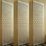 Aluminum perforado Sheets con 3D Eyes Patterns para Interior Decoration