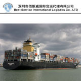 중국에서 남아프리카에 믿을 수 있는 운송업자 에이전트 또는 결합 출하