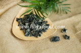 Natürliche Pflanzenhölzerner Ohr-Schwarz-Pilz ohne Schädlingsbekämpfungsmittel