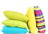 Bianco cuscino della piuma o calugine e macchina dell'ammortizzatore