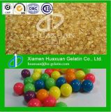 Planta industrial de Gelatinizer do Gelatin/de Paintballs do Gelatin/da colagem do couro cru