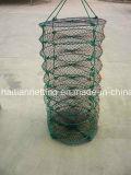Oyesterおよび帆立貝のネットのための円形のランタンネット