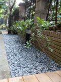 Decorazione nera del giardino della pietra del ciottolo