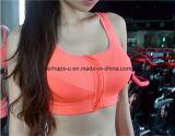 Slijtage van de Yoga van de Bustehouder van de Sporten van de Slijtage van de Fitness van de Vrouwen van de Kleur van de manier de Zuivere