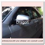 Decoração do carro e linha de tira moldando colorida da guarnição da proteção