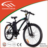 Alloy en aluminium 500W Motor 48V Mountain E Bike