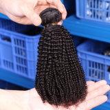 Weave chinês do cabelo humano do cabelo profundamente Kinky malaio popular do Virgin da onda do Afro