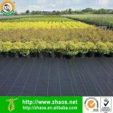 Jardim plástico das esteiras do protetor de Weed tampa à terra do grande
