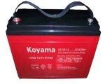 batería del AGM del ciclo de 12V 135ah para el alumbrado de seguridad y solar profundos